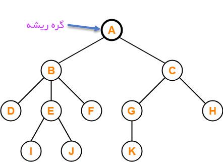 گره ریشه درخت